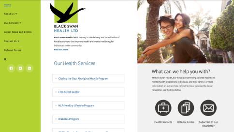Black Swan Health Web Design - Tess Palmyre